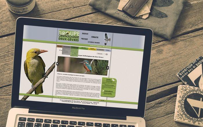 Site groupe ornithologique Demo 2 - Alice Belain
