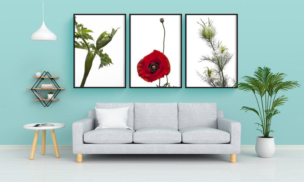Triptyque de Poster de plantes - Alice Belain